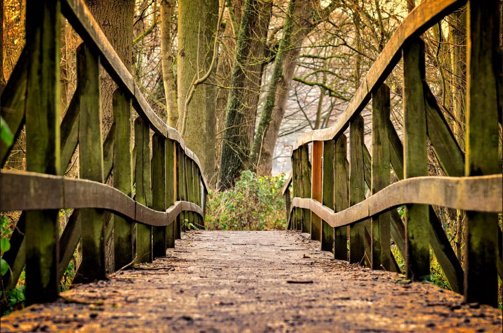 bridge on a path